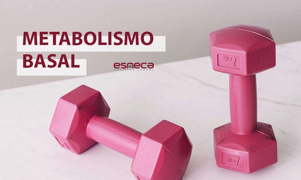 5 consejos para aumentar el metabolismo basal