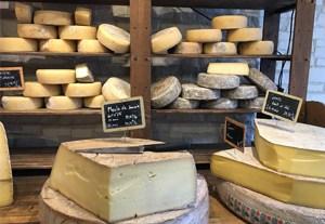 curso-envasado-quesos
