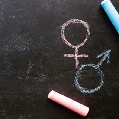 Curso en Participación y Creación de Redes con Perspectiva de Género