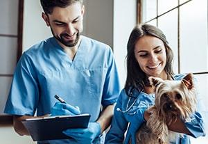 master-auxiliar-veterinario