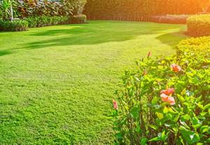 master-decoracion-jardines