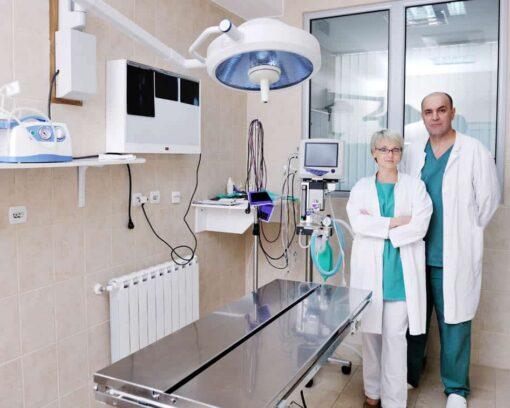 Estudiar máster en gestión y dirección de clínicas veterinarias