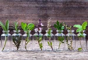 master-homeopatia