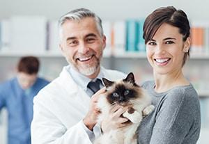 master-oftalmologia-veterinaria