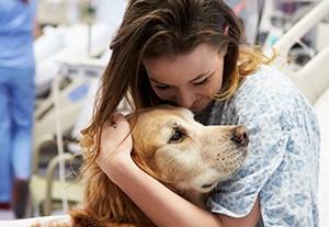master-perro-de-terapia