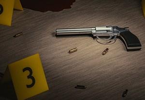 master-reglamento-armas