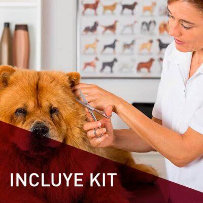 peluqueria canina y felina con kit