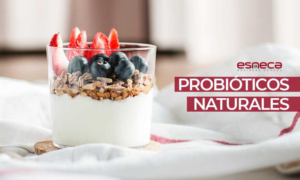 ¿Qué son los probióticos naturales y dónde los encontramos?