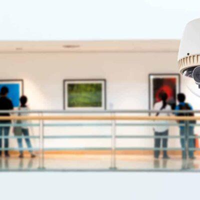 tecnico-experto-en-organizacion-interna-seguridad-y-vigilancia-en-museos-perito-judicial-autentificado-por-notario-europeo