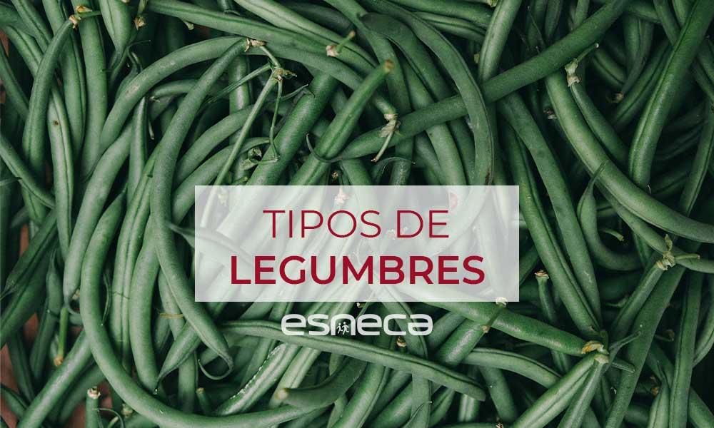 Tipos de legumbres y propiedades nutricionales que aportan a tu dieta