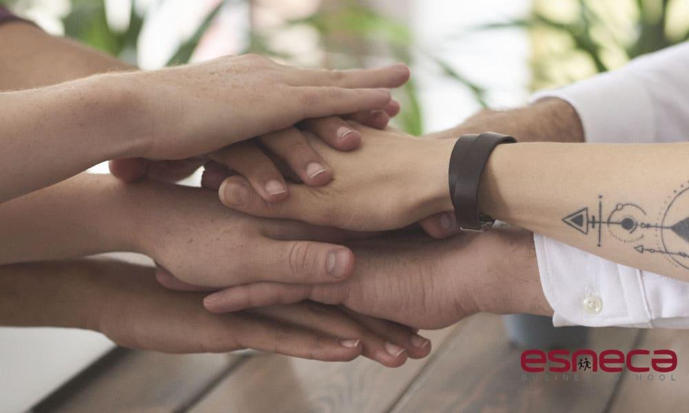 Trabajo en equipo en una empresa: importancia y beneficios