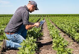estudiar-regimen-agrario