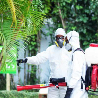 master en control de plagas